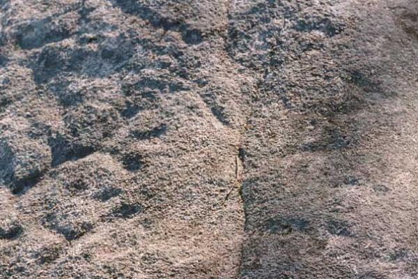 petroglifo02005F5EA6-A67F-1FA7-C742-834B731129C3.jpg